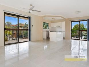 Totally Renovated & Open Plan - Clayfield