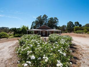 REDUCED PRICE - EXCEPTIONAL PROPERTY - FIELD OF DREAMS!!! - Narrogin
