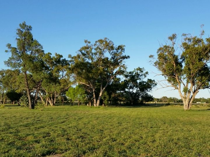 75 Adavale Road, Charleville, QLD