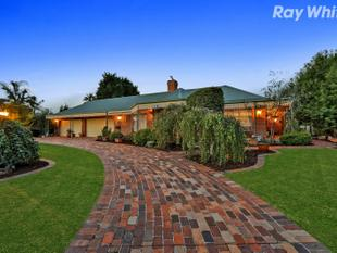 Quality Home With Luxury Landscape - Lysterfield
