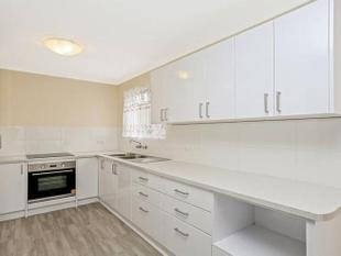 1 WEEKS FREE RENT ON APPROVAL-Dual Living & Plenty More! - Kingston