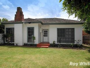 ADORABLE, FLEXIBLE AND AFFORDABLE - Ringwood