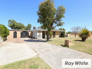 4x1 on Huge 693m2 Block with Shed! - East Cannington