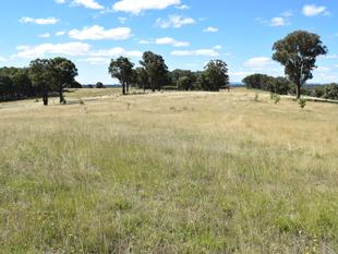 DEVELOPMENT OPPORTUNITY - Guyra