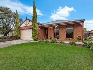 Low Maintenance, Delightful & Central - Warrnambool