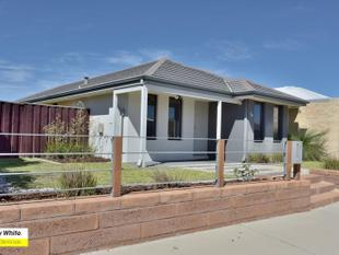 CUTE AND FULL OF CHARM - Ellenbrook