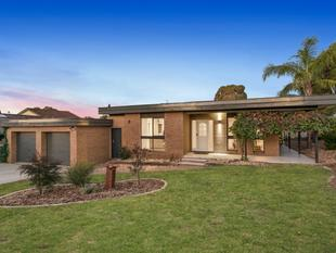 Sensational Family Home in Highly Sought After Location - Strathdale
