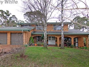 Impressive, yet so Affordable - Armidale