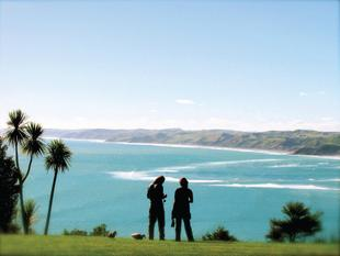 Solscape in Raglan - Raglan