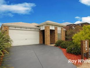 Beautiful 4 Bedroom Home, UNDER APPLICATION - Carrum Downs