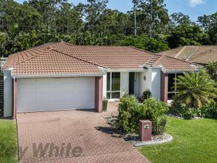 Private and Spacious Low Set Family Home - Carseldine