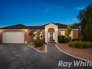 Spacious Modern 4 Bedroom + Study on 958sqm Approx. - South Morang
