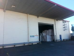 Large Warehouse Space - Mount Maunganui