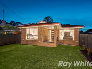 Renovated Flair For Lifestyle Perfection - Scoresby