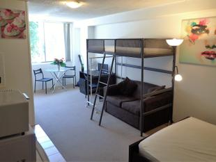 Large Furnished Apartment Near Kings Cross Train StationWalk to CityWiFi Available - Potts Point