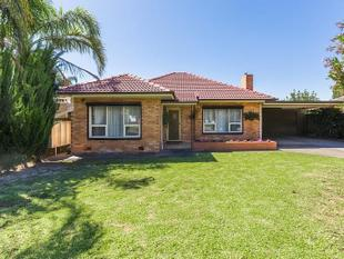 Renovated Family Home with Plenty of Space - Mitchell Park