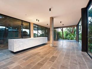 Executive Treetop Hideaway Exuding Designer Sophistication - Coogee
