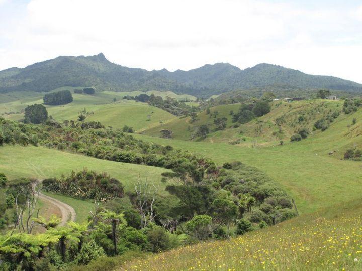 447 Wainui Road, Raglan, Waikato District