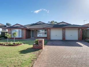 Absolutely Immaculate! - Modbury Heights