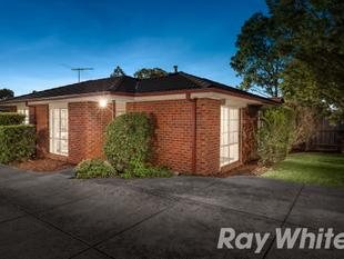 Comfortable, Classic Haven - Bayswater