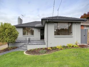 BEAUTIFULLY PRESENTED HOME IN QUIET STREET! - Box Hill North