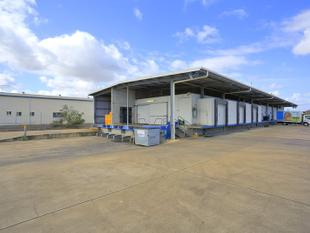 Vacant possision Commercial cold-room building Bundaberg - Svensson Heights