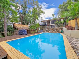 Modern family home, beautifully landscaped with a pool - Mount Gravatt East
