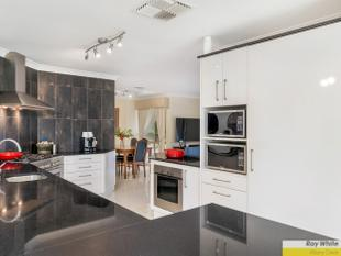 Renovated charmer with space to store your caravan!! - Albany Creek