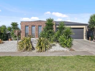 Perfect To Nest or Invest - Grovedale
