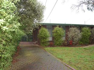 A Home among the gum trees - Mt Helen - Mount Helen