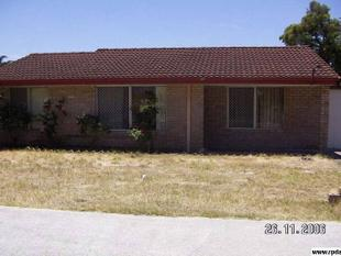CLOSE TO DRYANDRA PS! - Mirrabooka