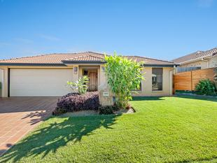 Lifestyle Plus Location! Walk to Lake, Schools & Shops! 4 Bed + Office, Media, Pool & Fantastic Entertaining! - North Lakes