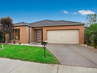 Fantastic four bedroom home - Berwick