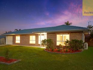 Perfect for first home buyers and investors - Crestmead