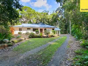 VERY PRIVATE - SEPARATE STUDIO - TOP OF THE RANGE - Kuranda