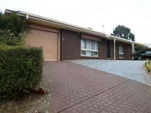 Family home in sought after suburb - Modbury Heights