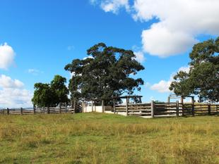 BRISBANE VALLEY GRAZING - 250 ACRES - Toogoolawah