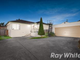 Sophisticated Kitchen, Private Position - Bayswater