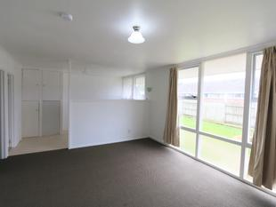 New Renovated 2 Bedroom Flat - Onehunga
