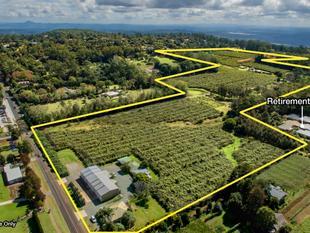 50 acres of Agribusiness Development land - Tamborine Mountain