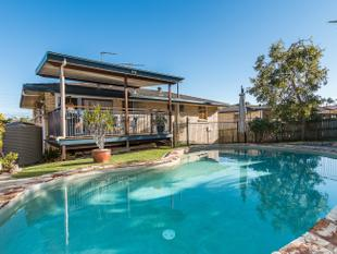 Elevated High Set Brick Family Home - Mansfield Catchment! - Mansfield