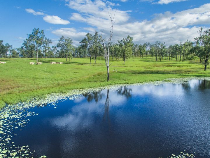 290 Old Rosevale Road, Warrill View, QLD
