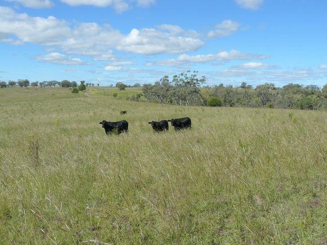 '' Fairford, Warialda, NSW