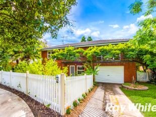 Newly Renovated Family Home in Perfect Location! - Castle Hill