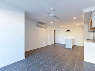 TWO WEEKS FREE RENT! 2 Bed, 2 Bath, 1 Car! - Greenslopes