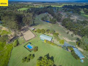 PRISTINE HORSE PROPERTY WITH TWO HOMES - Wamuran