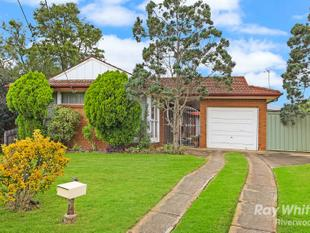 BRICK RESIDENCE or Re-Develop (STCA) (607m2) - Revesby