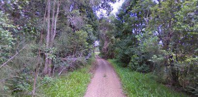 10 Roseneath Road, Bobs Creek, NSW