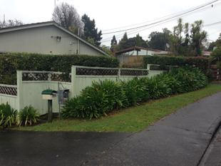 Tidy 2 bedroom unit with garage - Te Atatu South