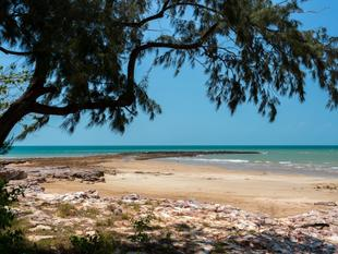 Reduced To Sell - Make An Offer! - Nightcliff